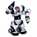 Роботы (15)
