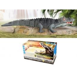Музыкальный крокодил со светом 9985 (на батарейках)